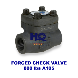 Check valve forged class 800 A105