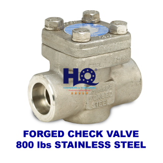 Check valve forged socket weld class 800 SUS304