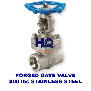 Gate valve forged socket weld class 800 SUS304