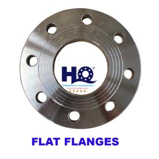 Mặt bích phẳng Flat flange DIN 2576 PN10